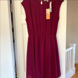 Collective Concepts Lined Dress